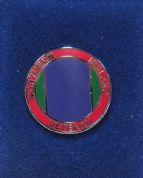 Northern Ireland Veteran Enamelled Lapel Pin